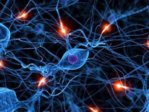 Khám một số hội chứng thường gặp trong lâm sàng Thần kinh